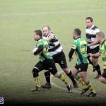 Rugby 2015-Feb-7 (17)