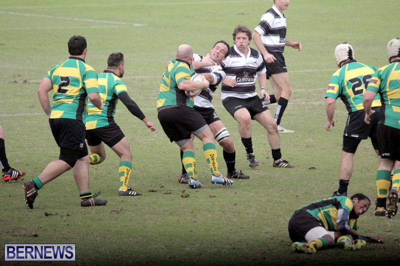 Rugby-2015-Feb-7-18