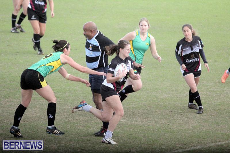Rugby-2015-Feb-7-3