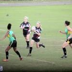 Rugby 2015-Feb-7 (8)