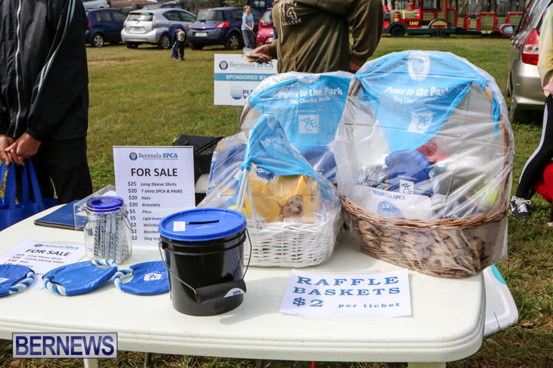 SPCA-Paws-To-The-Park-Bermuda-March-1-2015-100