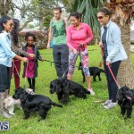 SPCA Paws To The Park Bermuda, March 1 2015-18