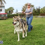 SPCA Paws To The Park Bermuda, March 1 2015-24