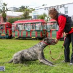 SPCA Paws To The Park Bermuda, March 1 2015-33
