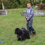 SPCA Paws To The Park Bermuda, March 1 2015-34