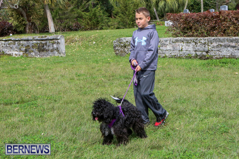 SPCA-Paws-To-The-Park-Bermuda-March-1-2015-34