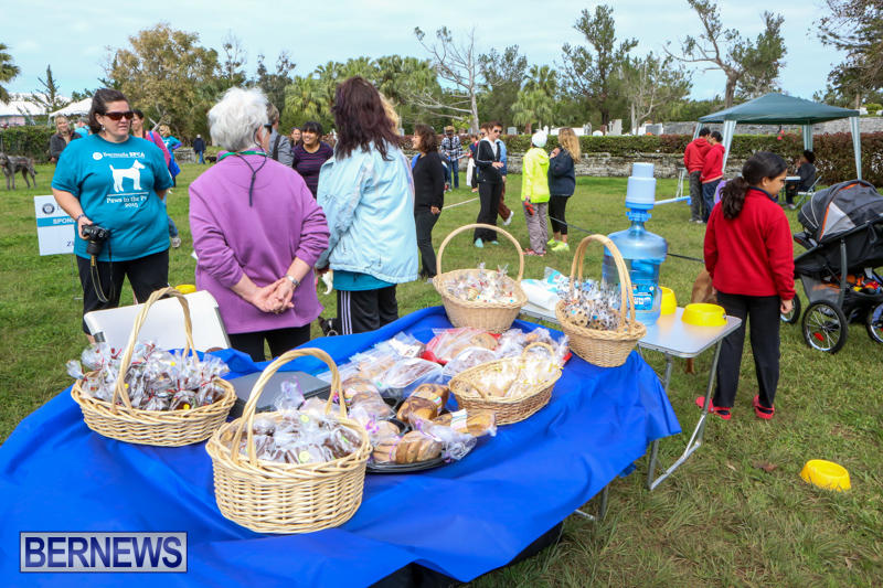 SPCA-Paws-To-The-Park-Bermuda-March-1-2015-52