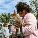SPCA Paws To The Park Bermuda, March 1 2015-59