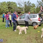 SPCA Paws To The Park Bermuda, March 1 2015-74