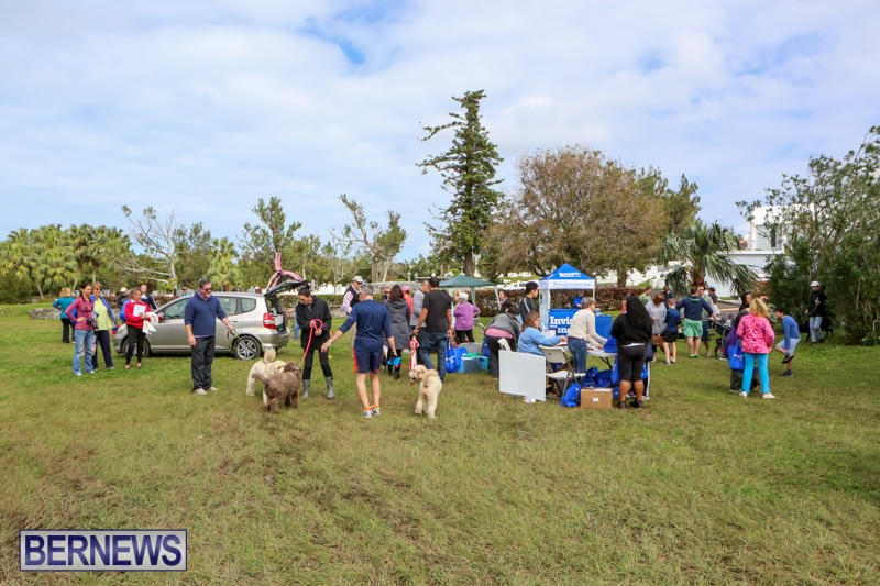 SPCA-Paws-To-The-Park-Bermuda-March-1-2015-75