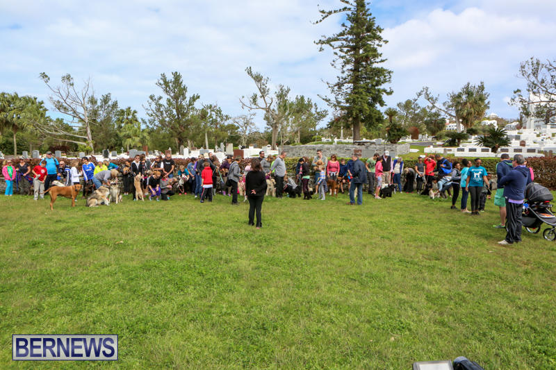 SPCA-Paws-To-The-Park-Bermuda-March-1-2015-76