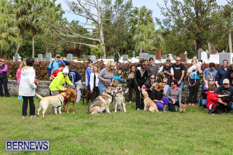 SPCA-Paws-To-The-Park-Bermuda-March-1-2015-77