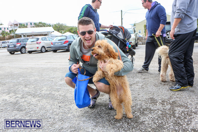 SPCA-Paws-To-The-Park-Bermuda-March-1-2015-8