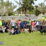 SPCA Paws To The Park Bermuda, March 1 2015-80