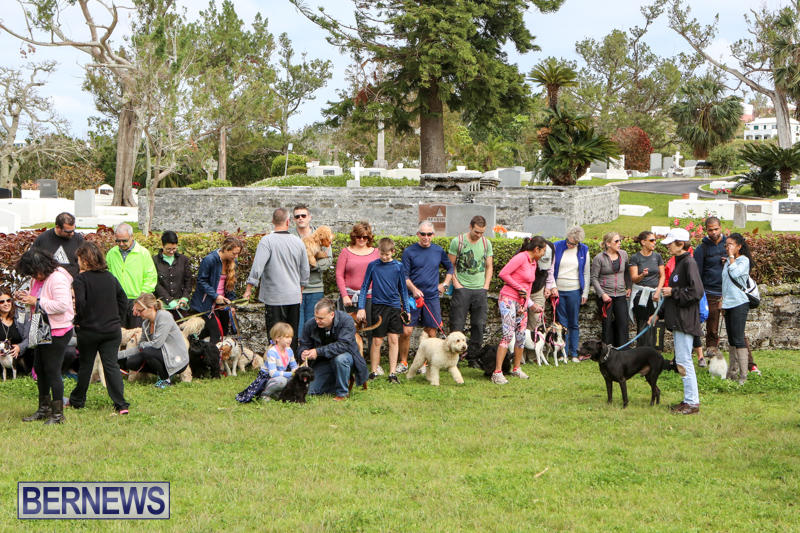 SPCA-Paws-To-The-Park-Bermuda-March-1-2015-80