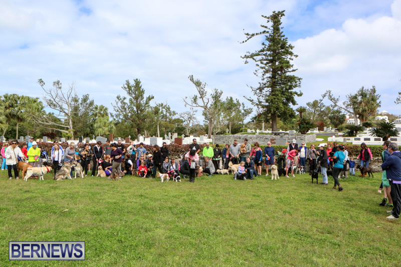 SPCA-Paws-To-The-Park-Bermuda-March-1-2015-83