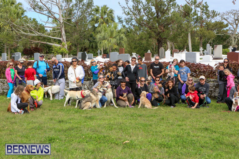 SPCA-Paws-To-The-Park-Bermuda-March-1-2015-85