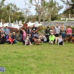 SPCA Paws To The Park Bermuda, March 1 2015-86