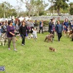 SPCA Paws To The Park Bermuda, March 1 2015-87