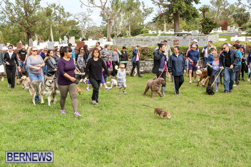 SPCA-Paws-To-The-Park-Bermuda-March-1-2015-87