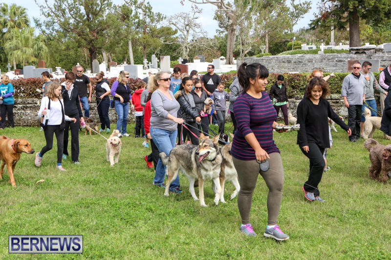 SPCA-Paws-To-The-Park-Bermuda-March-1-2015-88