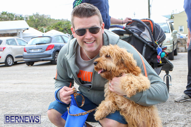 SPCA-Paws-To-The-Park-Bermuda-March-1-2015-9