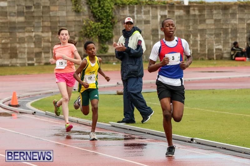 Telford-Magic-Mile-Bermuda-February-28-2015-20