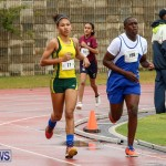 Telford Magic Mile Bermuda, February 28 2015-24