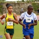 Telford Magic Mile Bermuda, February 28 2015-25
