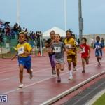 Telford Magic Mile Bermuda, February 28 2015-40