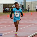 Telford Magic Mile Bermuda, February 28 2015-44