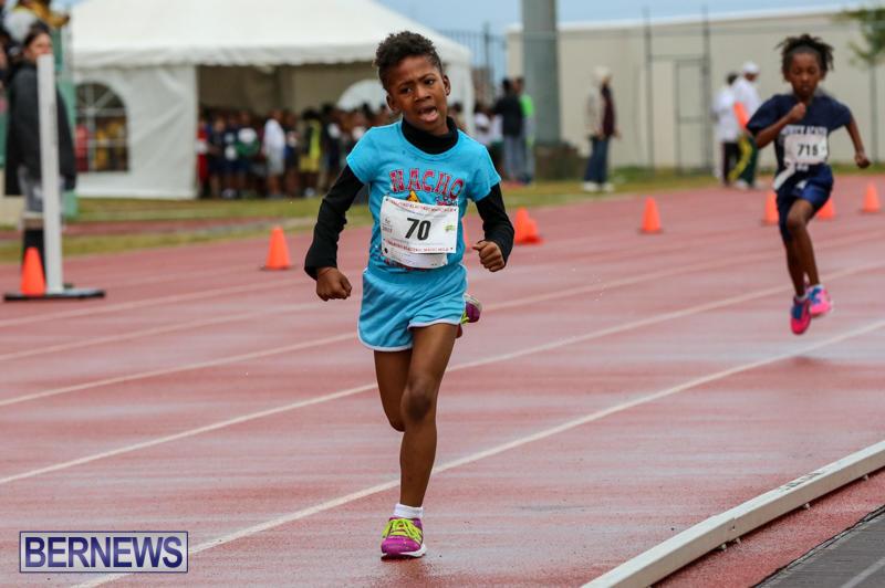 Telford-Magic-Mile-Bermuda-February-28-2015-44