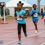 Telford Magic Mile Bermuda, February 28 2015-47