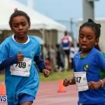 Telford Magic Mile Bermuda, February 28 2015-48