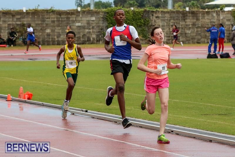 Telford-Magic-Mile-Bermuda-February-28-2015-5