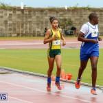 Telford Magic Mile Bermuda, February 28 2015-7