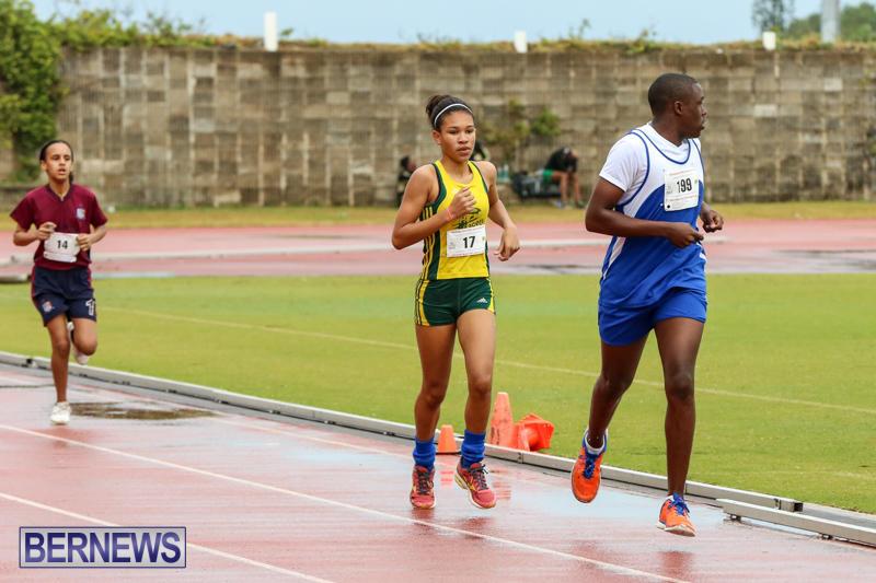 Telford-Magic-Mile-Bermuda-February-28-2015-7