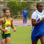 Telford Magic Mile Bermuda, February 28 2015-8