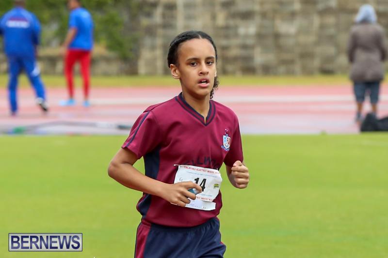 Telford-Magic-Mile-Bermuda-February-28-2015-9
