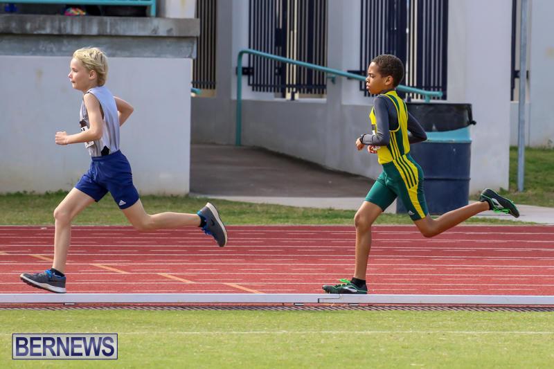 Track-Field-Meet-Bermuda-February-22-2015-103