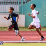 Track & Field Meet Bermuda, February 22 2015-105
