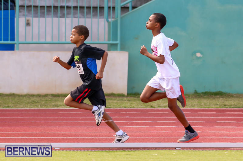 Track-Field-Meet-Bermuda-February-22-2015-105