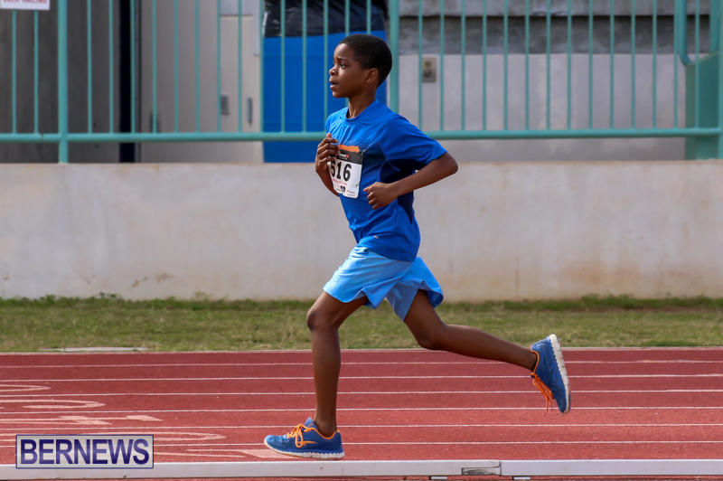 Track-Field-Meet-Bermuda-February-22-2015-106