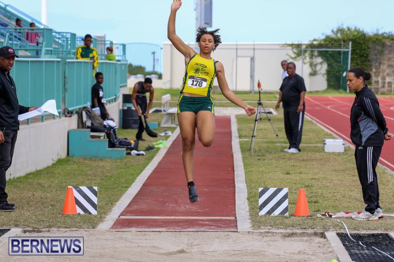 Track-Field-Meet-Bermuda-February-22-2015-11