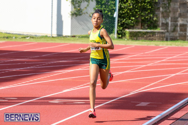 Track-Field-Meet-Bermuda-February-22-2015-129