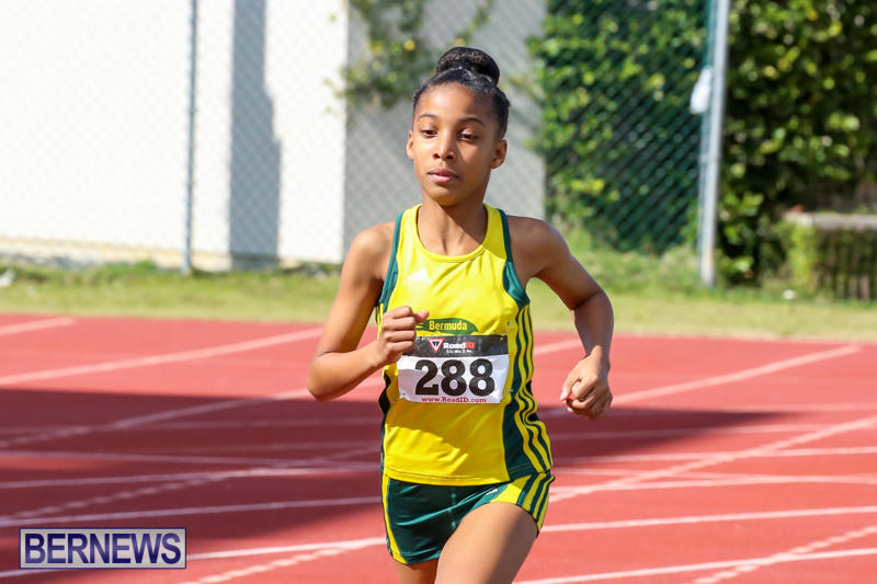 Track-Field-Meet-Bermuda-February-22-2015-130