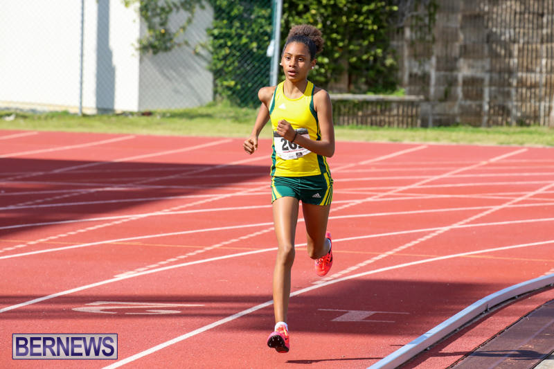 Track-Field-Meet-Bermuda-February-22-2015-131
