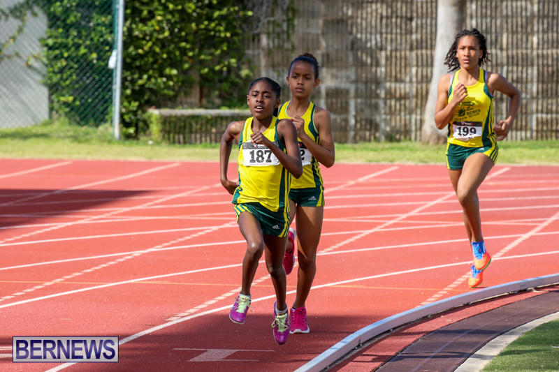 Track-Field-Meet-Bermuda-February-22-2015-134
