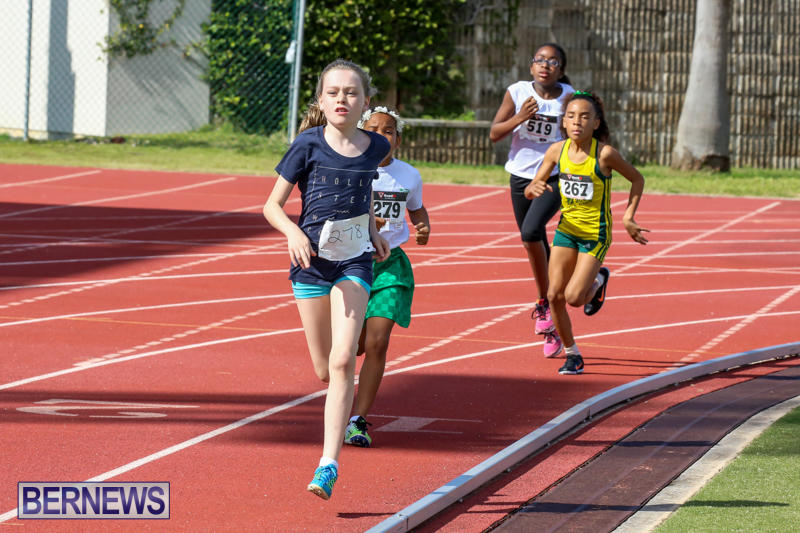 Track-Field-Meet-Bermuda-February-22-2015-141