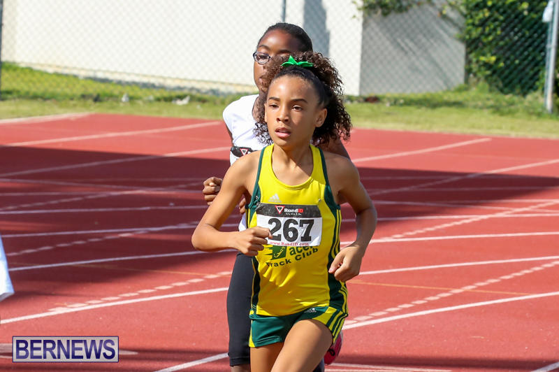 Track-Field-Meet-Bermuda-February-22-2015-143